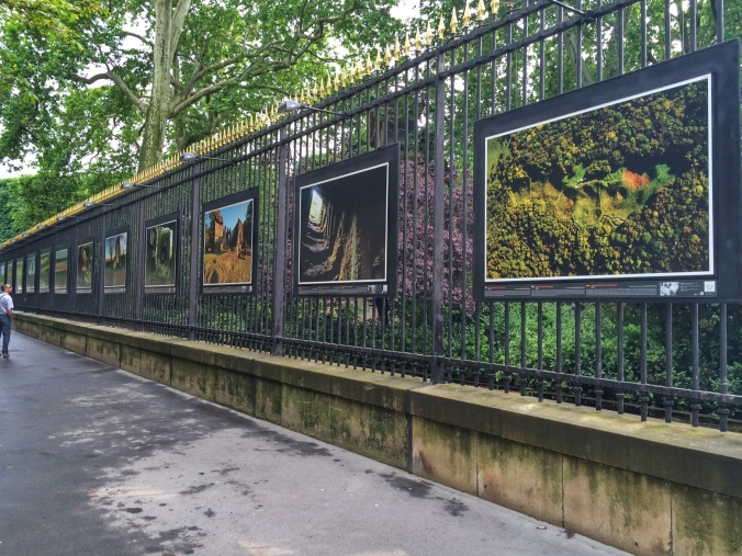 The art installation along the fence at Jardin Du Luxembourg; photos 'then and now' remembering WWII. Along my walk to school.
